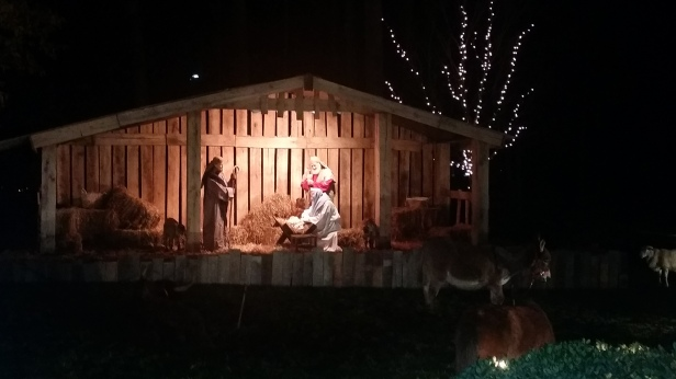so when my family and i first walked up to the front of the library we of course had to stop and watch the live nativity for a few minutes